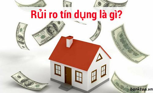 Rủi ro tín dụng là gì ?